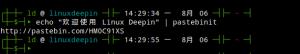 Pastebinit:Pastebin 类网站文本上传工具