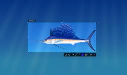 deepin-screenshot-2