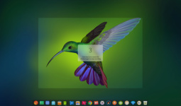 deepin-screen-recorder3_en