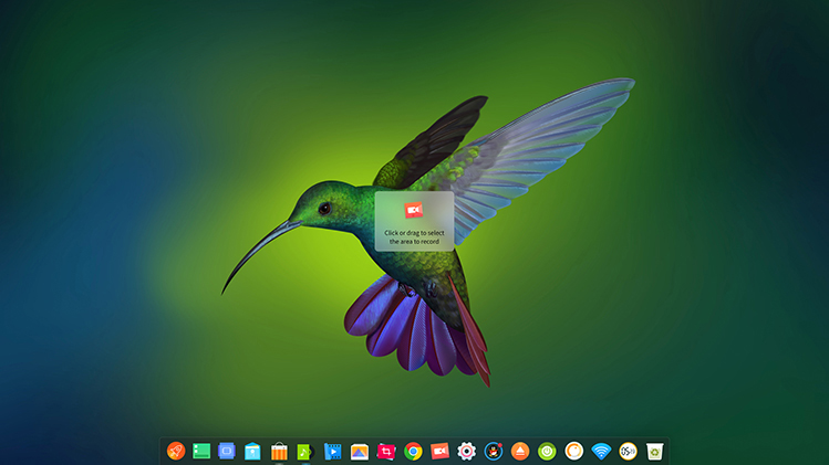 deepin-screen-recorder1_en
