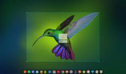 deepin-screen-recorder2_zh