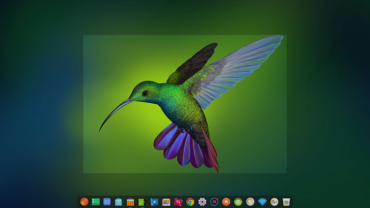 deepin-screen-recorder4