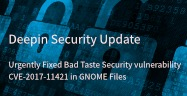 Deepin Security Update——Urgently Fixed Bad Taste Security vulnerability CVE-2017-11421 in GNOME Files