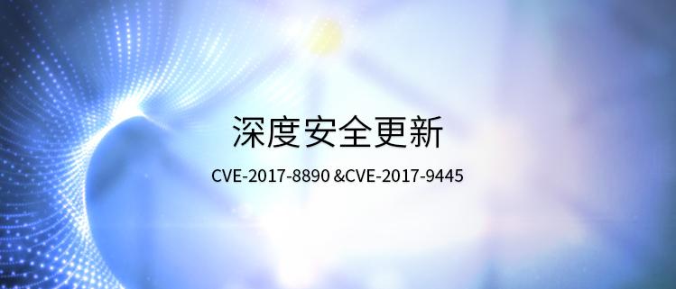 深度安全更新(CVE-2017-8890 &CVE-2017-9445)