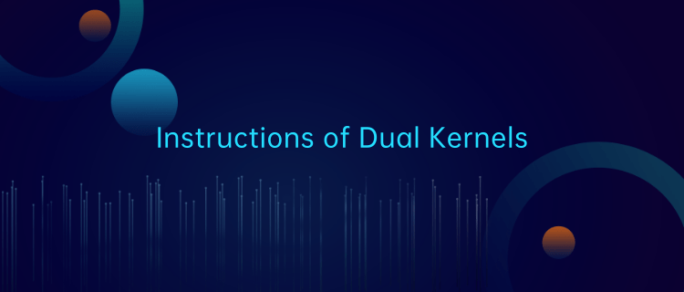 deepin -- Instructions of Dual Kernels