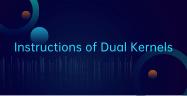 deepin -- Instructions of Dual Kernels